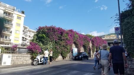 Italy Travel Tip | Wander Around Sorrento in the Amalfi Coast