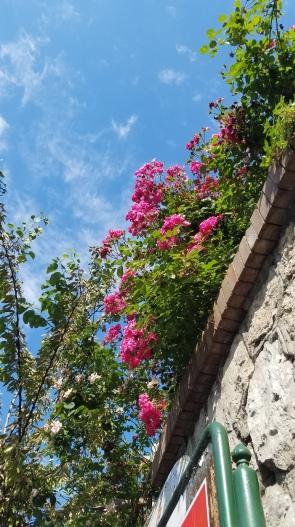 Italy Travel Tip   Wander Around Sorrento in the Amalfi Coast