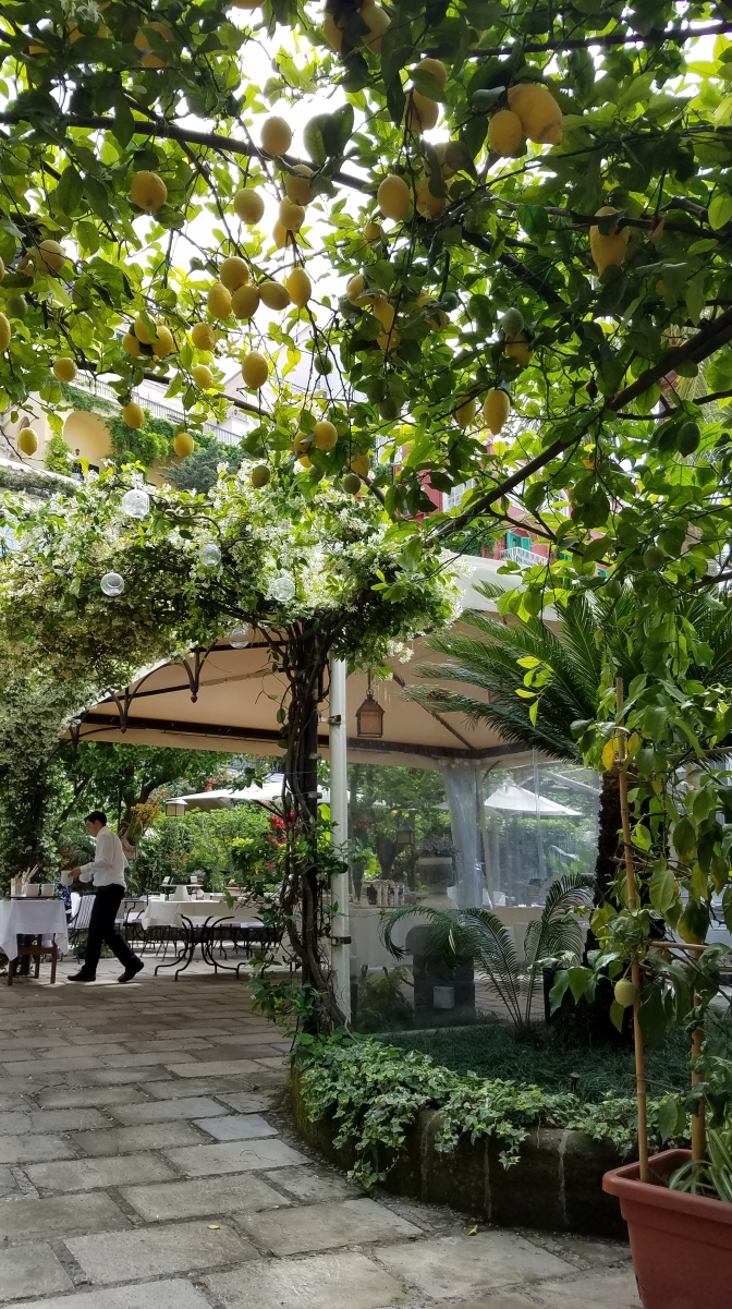Italy Travel Tip | Have Lunch Beneath a Lemon Grove in Positano | Amalfi Coast