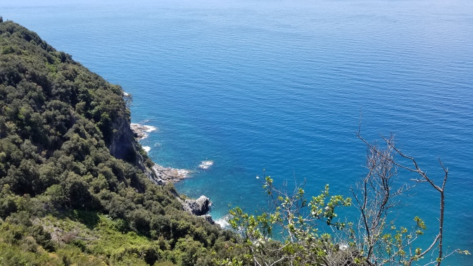 Italy Travel Tip | One of the most beautiful views I've ever seen is from the hiking paths in Cinque Terre