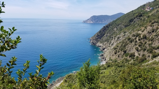 Italy Travel Tip | Hike Cinque Terre's cliffside paths