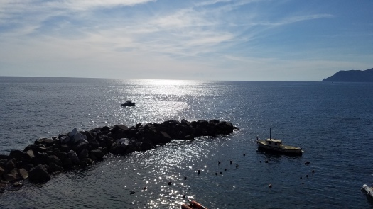 Italy Travel Tip | Take a day trip to Cinque Terre from Florence