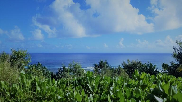 the-westin-princeville-kauai-hawaii-pacific-ocean