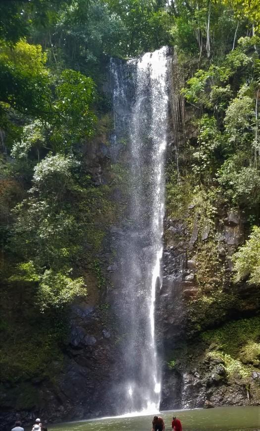 Kauai, Hawaii Travel Guide   Hike & Kayak Along the Wailua River