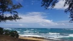 Top 10 Places to See in Kauai, Hawaii | Hanae Beach