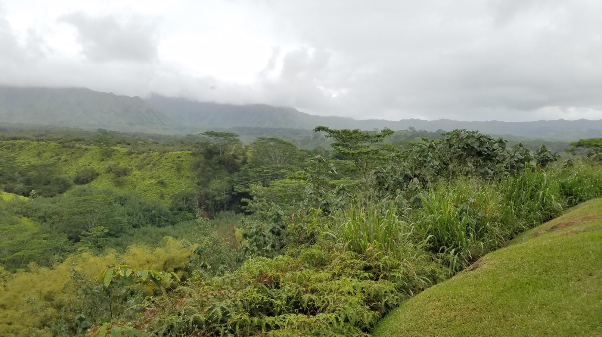 Kauai, Hawaii Travel Guide | Go tubing and zip lining with Kauai Backcountry Adventures