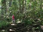 Top 10 Things to Do In Kauai, Hawaii | Climb Wailua Falls