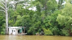 new orleans travel guide: do the swamp tour with cajun encounters