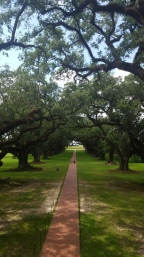 new orleans travel guide: skip the oak alley plantation tour