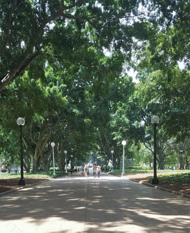 Sydney, Australia Travel Guide | Hyde Park