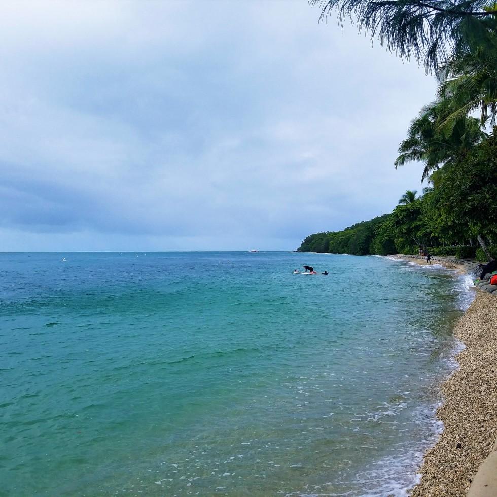 Fitzroy Island: A Thirtysomething Wayfarer's