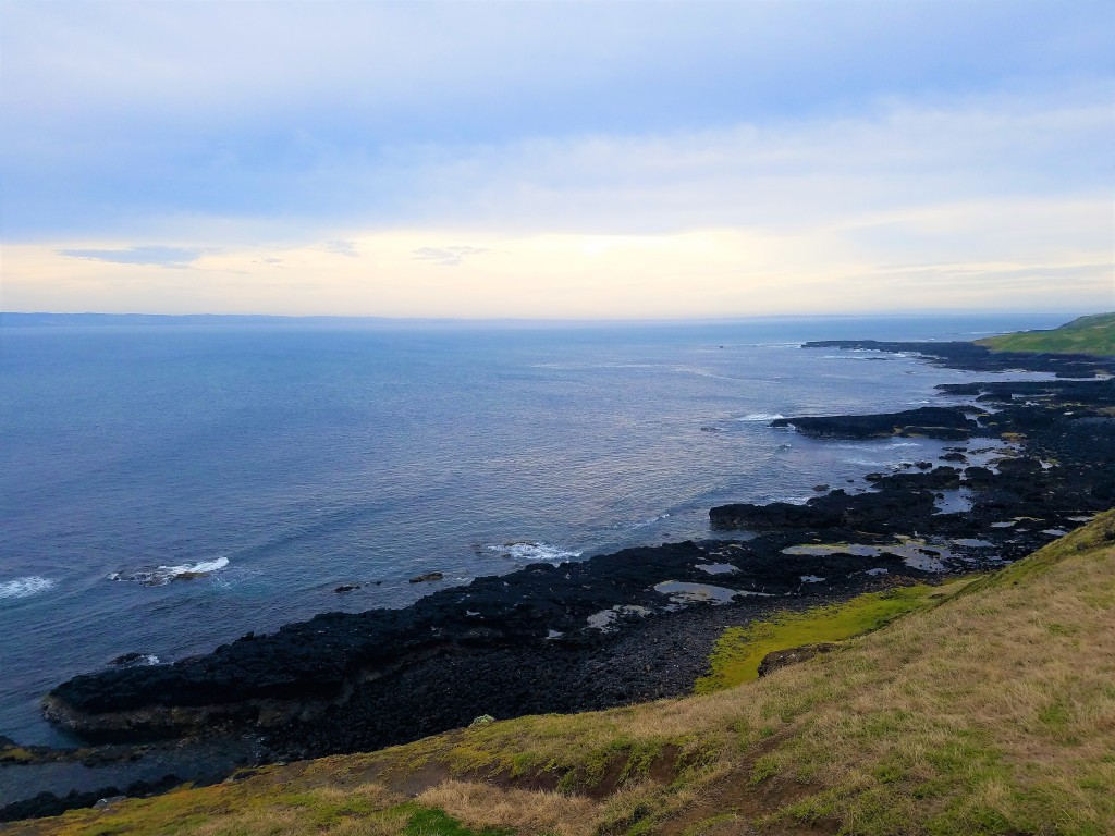 Australia Travel Guide | Phillip Island & Penguin Parade Half-Day Tour from Melbourne | The Nobbies